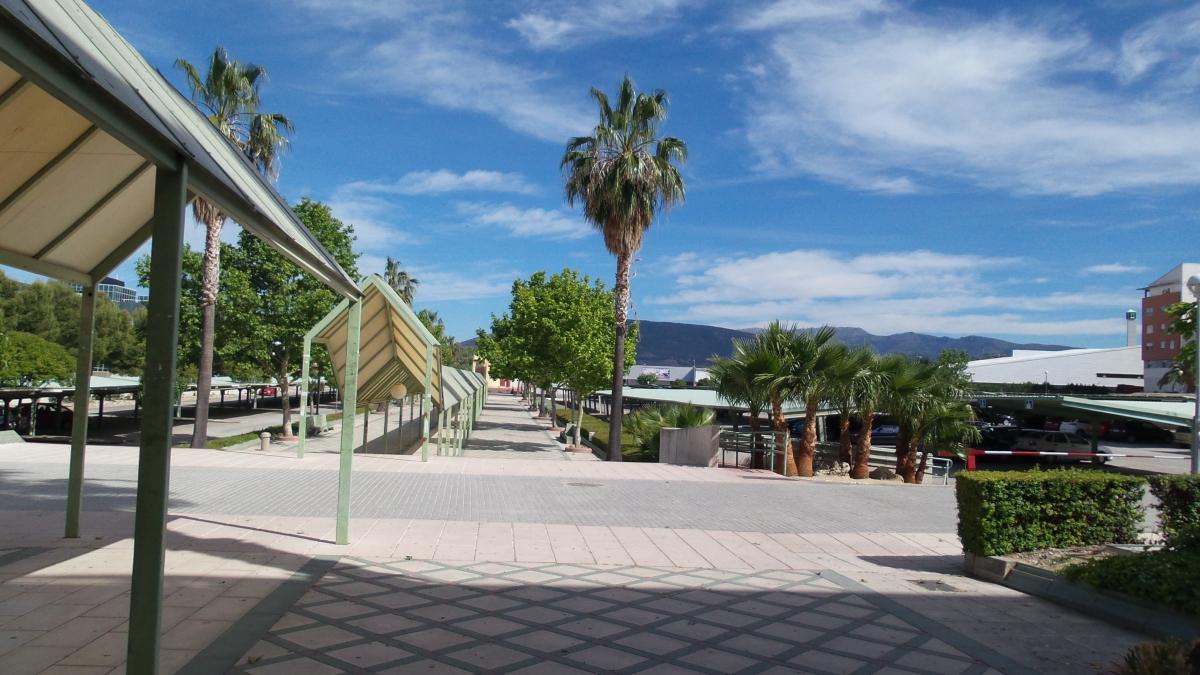 Un semestre Erasmus à Jaen